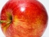 Éltető Egyensúly program a III. kerületi oktatási intézményekben | kép forrása: wikipedia.org