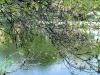 Állami fenntartásba került a józsefvárosi Orczy-park | kép forrása: wikipedia.org / Osvát András